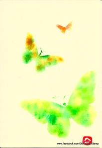 butterflies3 001